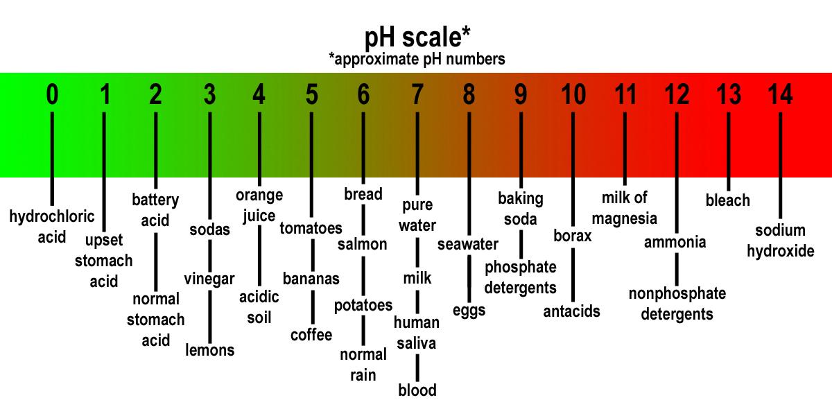 Chemical PH Chart – Ph Chart